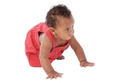 Adorable baby crawling